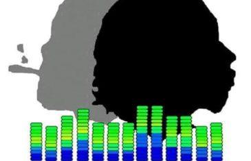 "DJ Melodic Sounds x Steadyroc ""Politikin"""
