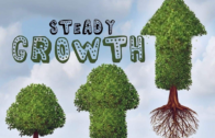 Blaq Pyrates – Steady Growth